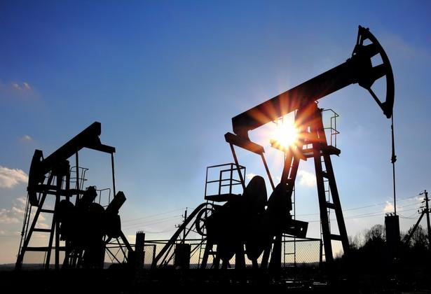 W ciągu ostatnich pięciu lat ropa zdrożała o 56 proc., ale wartość jednostki Quercus Oil lev poszłaby w górę tylko o 5,1 proc.