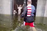 YT_heroj_spasava_pse_iz_uragana_vesti_blic_safe