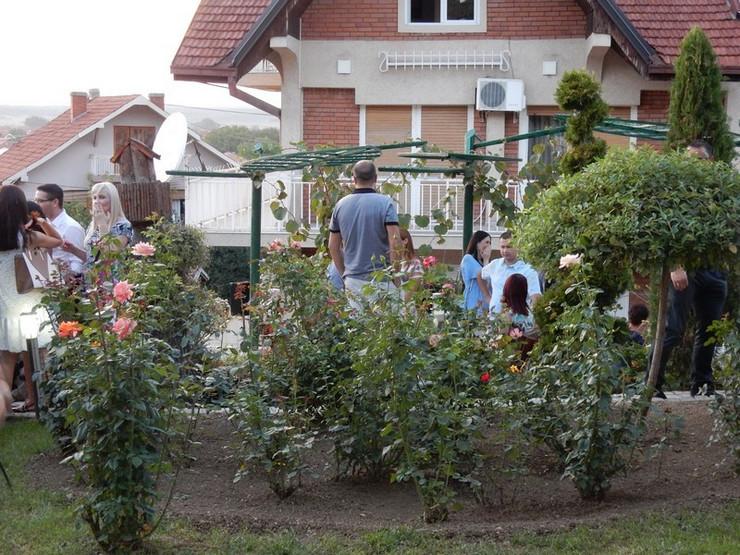 Vrt gradonačelnika Leskovac