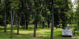 Park Bogucki wypięknieje