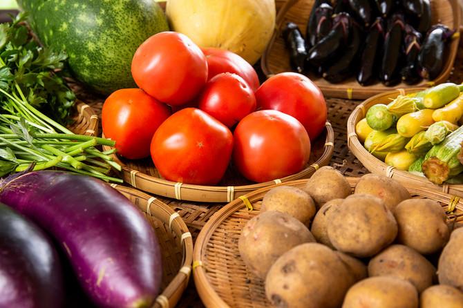 Paradajz, krompir, patlidžan