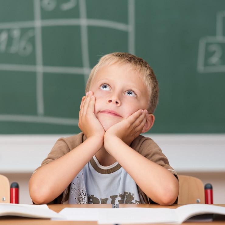 Dečak, učenik, đak, učionica, škola, domaći