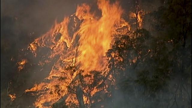 Australija požar