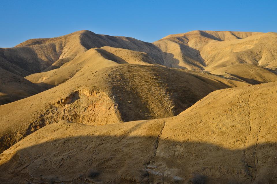 Pustynie Palestyny na Zachodnim Brzegu Jordanu.