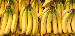 Banany i mango można już uprawiać w Europie