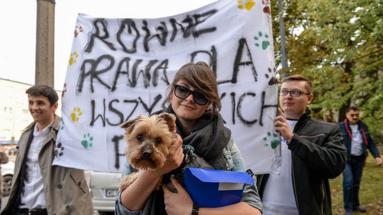 Kilkanaście psów, petycja do szefa Solidarności i zapowiedź walki ze związkowymi przywilejami. Członkowie i sympatycy ugrupowania Nowoczesna Ryszarda Petru zorganizowali pikietę przed siedzibą związku Solidarność w Warszawie.