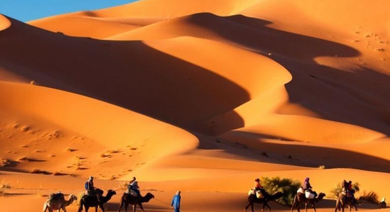 Camel trekking across Sahara Desert in morocco