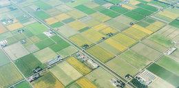 Koszmar rolników! W Polsce brakuje ziemi!