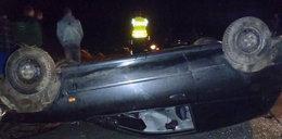 Lis nie żyje, kierowca ranny, auto do kasacji