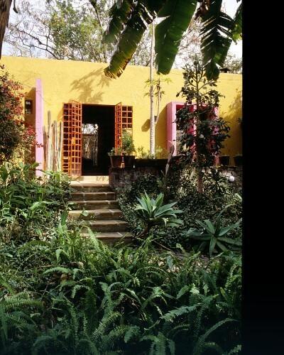 Przydomowy ogród w Meksyku