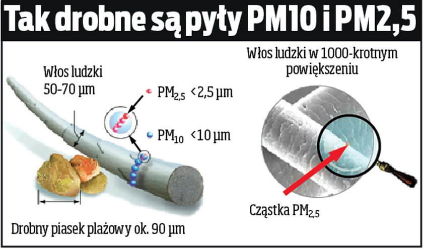 Tak działa pył zawarty w smogu