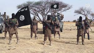 Iswap has been seen as the strongest jihadist group in Nigeria since the death of Boko Haram leader Abubakar Shekau earlier this year.