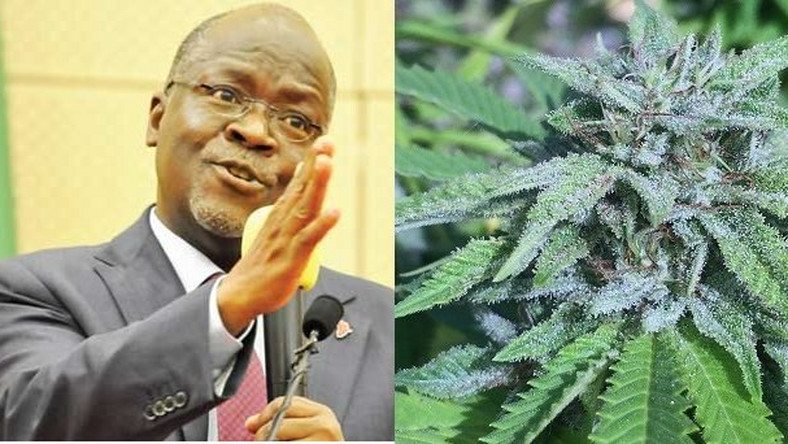 """Smoke wee"" and get strength to discharge your duties fearlessly – President Magufuli instructs his 'dull' minister"