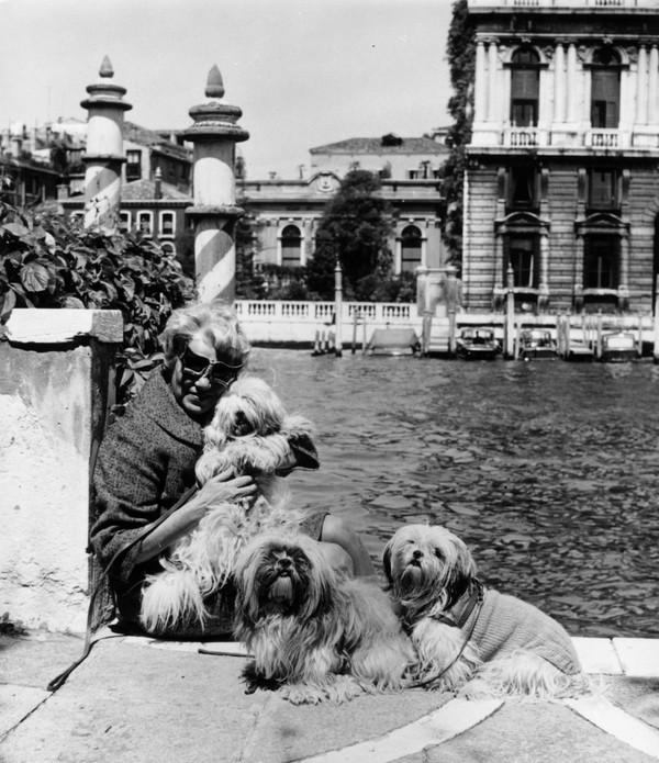 Peggy Guggenheim nad Canal Grande, z ukochanymi psami
