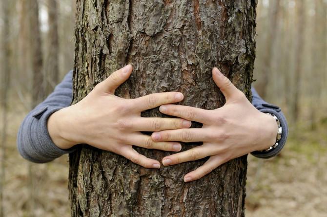 Možete i drvo da zagrlite, to je sada moderno. Ali radije potražite društvo ljudi. Ili životinja!
