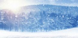 Pierwszy śnieg w Polsce! Park Narodowy publikuje nagranie