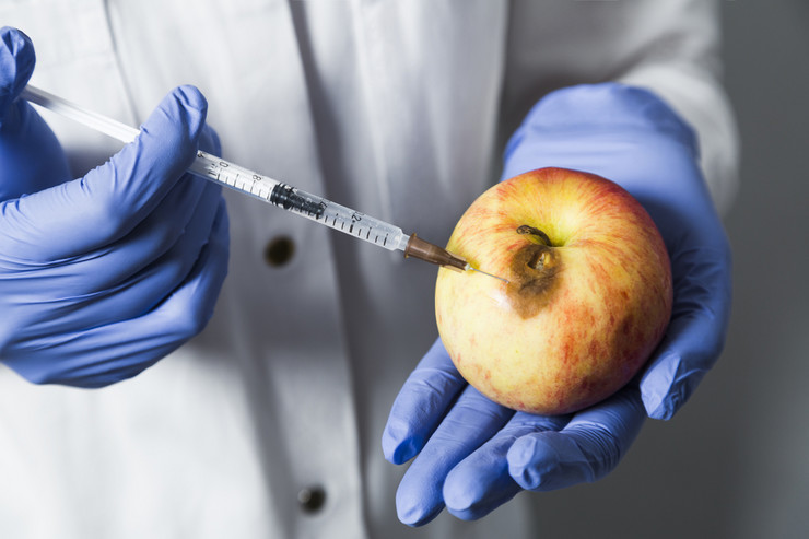 GMO shutterstock_627437567