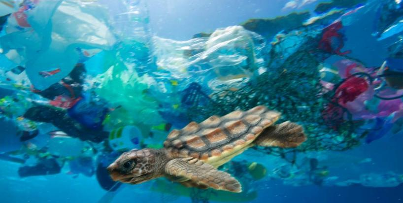 Szokujące wyniki badania dna oceanu. Dryfujący plastik to niejedyny problem