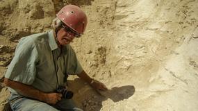 Nasza wiedza o starożytnym Egipcie przypomina wielką, białą plamę - rozmowa z prof. Andrzejem Niwińskim