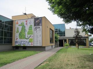 Władze Białegostoku ogłosiły konkurs na dyrektora Białostockiego Teatru Lalek