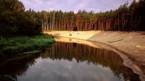 Szlak I wojny światowej w Polsce zostanie wyznaczony wiosną 2015 r.