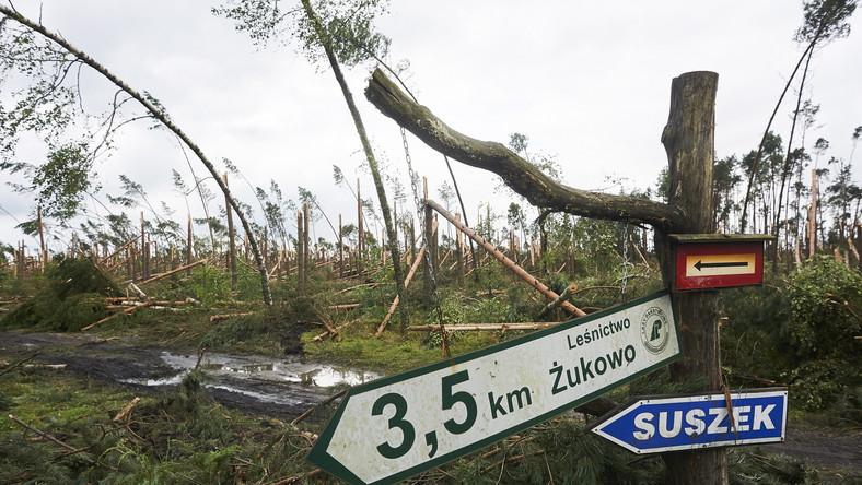 W nocy z piątku na sobotę na terenie obozu harcerskiego w miejscowości Suszek rozegrała się tragedia. Towarzyszący burzom huraganowy wiatr kompletnie zniszczył i odciął obóz od świata (drogi zatarasowały wiatrołomy). Powalone drzewa przygniotły dwie harcerki w wieku 13 i 14 lat, nastolatki zginęły. Różnych obrażeń doznało też 38 innych uczestników obozu.