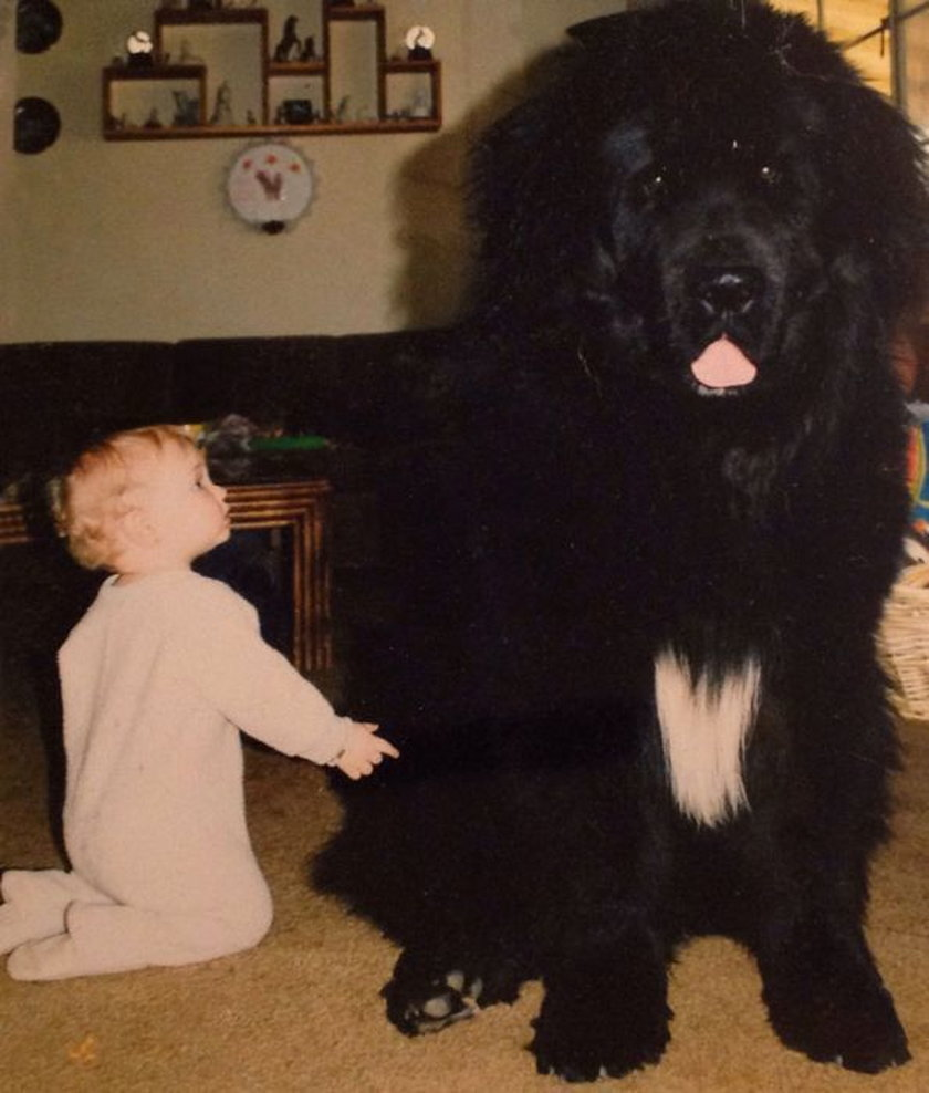 Wzruszające zdjęcia psów i dzieci