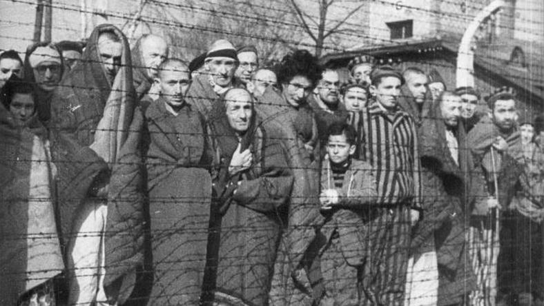 Wyzwoleni więźniowie KL Auschwitz