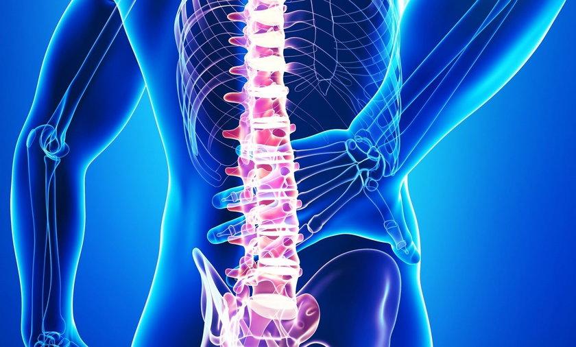 Dlaczego kręgosłup boli i jak sobie z nim poradzić?