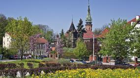 Najlepsze miejsca na wiosenny piknik w polskich miastach