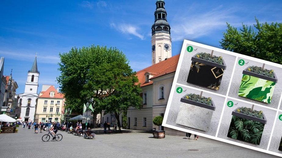 Zielona Góra i projekty donic (fot. Urząd Miasta w Zielonej Górze)