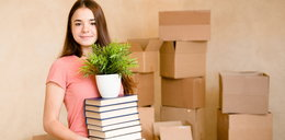 Potrzebujesz mieszkania na wynajem? To idealny moment, ceny są rekordowo niskie