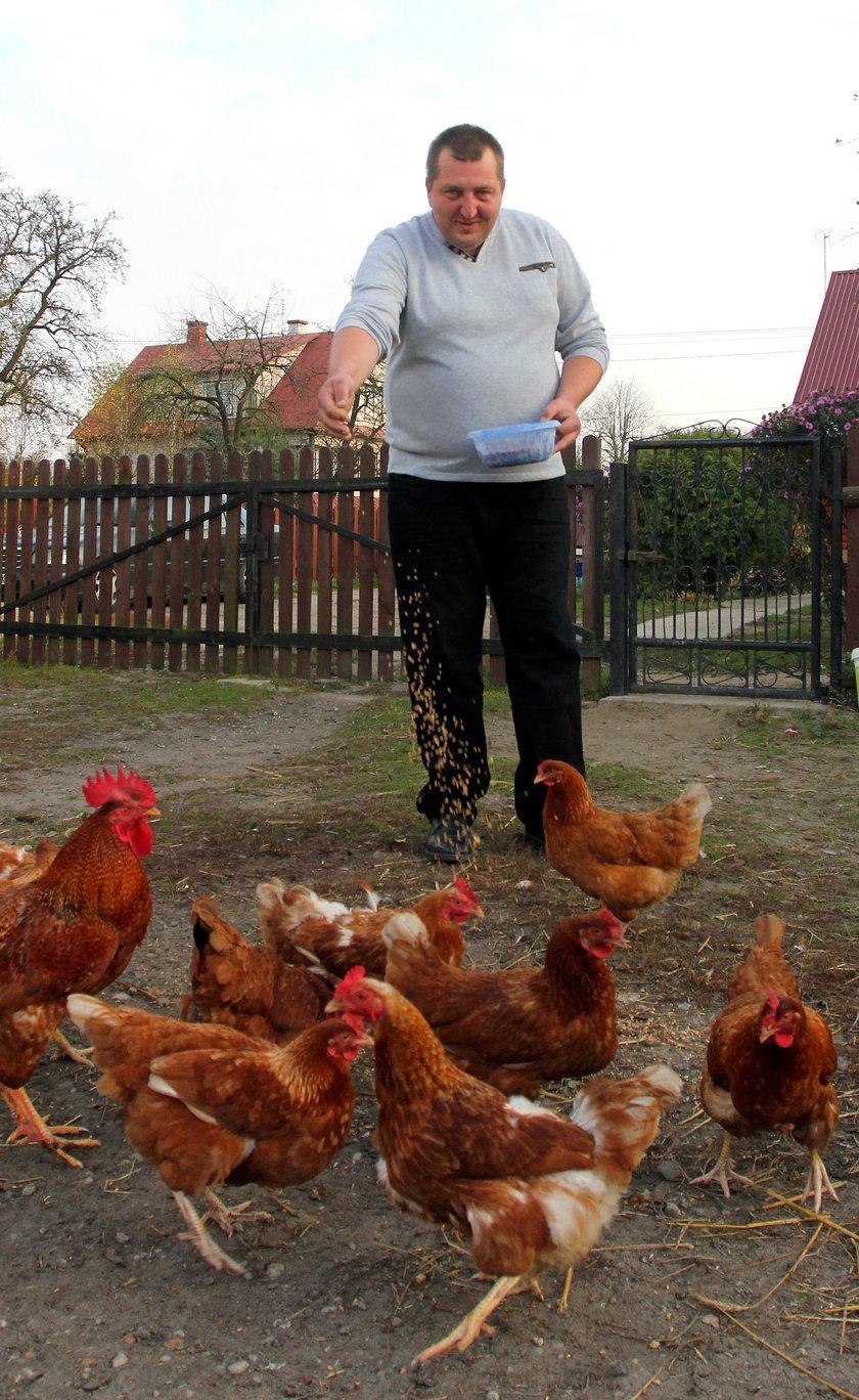 Adam Kraśko z kurami