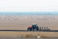 poljoprivredno zemljiste02 foto Nenad Mihajlovic