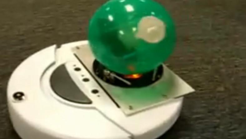 Zobacz, jak chomik pilotuje robota