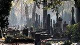 Będą usuwać groby komunistów z Powązek? Premier Morawiecki popiera pomysł