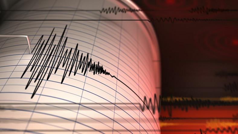 Trzęsienie ziemi, sejsmograf