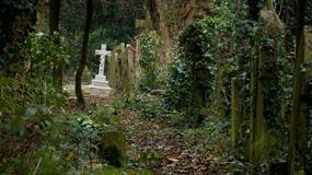 Cmentarz, na którym bały się mieszkać nawet duchy