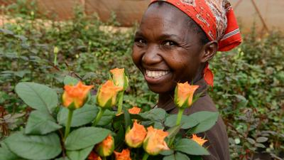 The world's flower garden is slowly withering away as Coronavirus takes hold of Europe; Tonnes of flower export wither away in Kenya as hundreds of workers sent home