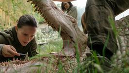 """""""Anihilacja"""": pierwszy zwiastun nowego filmu z Natalie Portman"""
