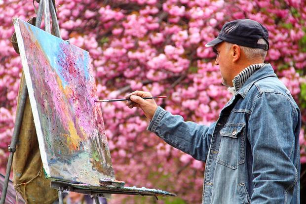 Kwitnące sakury w Użhorodzie