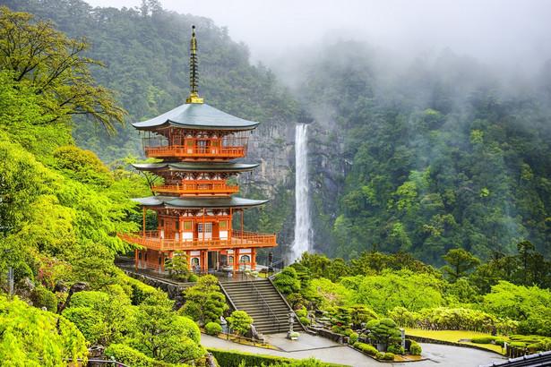 """Na szlaku Kumano Kodo Jeden z najpiękniejszych szlaków turystycznych Japonii, Kumano Kodō, prowadzi przez górzysty Półwysep Kii, znajdujący się na południe od Osaki. Kiedyś był on trasą pielgrzymki zarezerwowanej dla cesarzy i samurajów, dziś jest otwarty dla wszystkich poszukiwaczy i wędrowców. – Przez lata na szlaku zbudowano wiele buddyjskich świątyń i sanktuariów Shintō – rodzimej religii Japonii. W 2004 r. Kumano Kodō i budowle znajdujące się na szlaku otrzymały status światowego dziedzictwa – obecnie jest to jedna z dwóch dróg pielgrzymkowych na całym świecie uznanych przez UNESCO (drugą jest Santiago de Compostela) – zaznacza przedstawiciel biura Rainbow. Miastem uważanym za bramę do Kumano Kodo jest Tanabe . Przed podróżą można się tu wzmocnić sashimi, yakitori, sake i miejscową specjalnością umeshu (japońskim likierem morelowym). Trasa prowadzi od świątyni Takijiri-ōji, rozpoczyna się od stromej wspinaczki i prowadzi wzdłuż korzeni drzew i głazów, aż do Takahary, nazywanej """"wioską we mgle"""". To idealne miejsce na nocleg przed dalszą drogą. Bez względu jaką trasę obierzemy, wszędzie napotkamy na tak zwane """"punkty mocy"""". Są to świątynie, lasy i wodospady, w których można odnaleźć harmonię, uporządkować myśli i wzbogacić duszę. Warto uwzględnić jednak takie miejsca jak Kumano Sanzan - trzy wielkie świątynie Kumano - które są kamieniem węgielnym szlaku Nakahechi (znanego również jako Szlak Cesarski). Pierwsza z nich to Hongū Taisha wznosząca się nad pokrytym drzewami grzbietem. Na południowy wschód od niej leży drugie z wielkich sanktuariów tego obszaru, Nachi Taisha – pomarańczowa pagoda przy wodospadzie Nachi-nie-taki, najwyższym wodospadzie w Japonii. Aby dotrzeć do Kumano Hayatama Taisha, ostatniej z trzech świątyń, tradycyjnie trzeba pokonać trasę w dół rzeki Kumano-gawa do miejsca, w którym wpada ona do ogromnego Pacyfiku. Źródło: r.pl/japonia >>"""