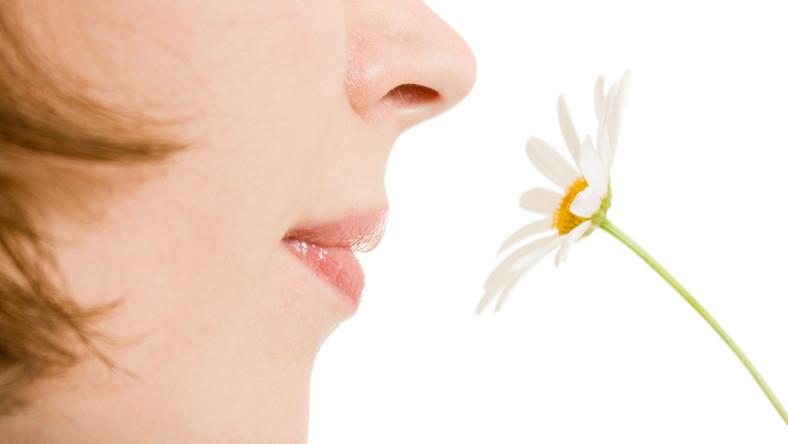 Mogą być spowodowane częstymi infekcjami górnych dróg oddechowych albo paleniem papierosów. Poza tym wraz z wiekiem zmysł węchu słabnie. Ta sytuacja wpływa na odczuwanie smaków. Osoby, które mają problem z węchem, decydują się na bardziej aromatyczne, mocniej doprawione potrawy