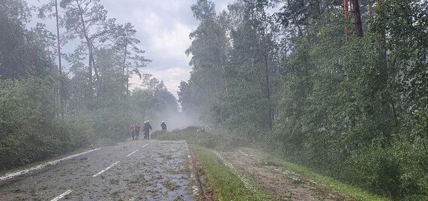 Tak wyglądają zniszczenia po burzach i nawałnicach w Polsce. Drzewo spadło na namioty na kampingu