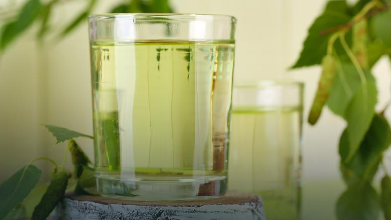 Woda brzozowa