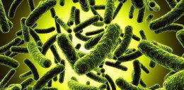 Uważaj, te superbakterie atakują na wakacjach