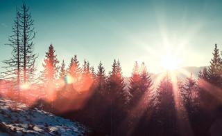 IMGW prognozuje nagłe ocieplenie. Temperatura może sięgnąć 13 st. C