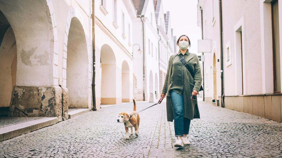 Pies w Koronie wspiera psiarzy w czasie pandemii