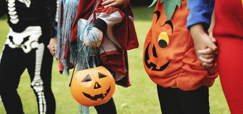 Halloween 2021. Wiersze dla dzieci