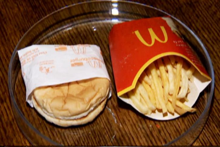 Six Year Old McDonalds Burger That Has Stayed The Same